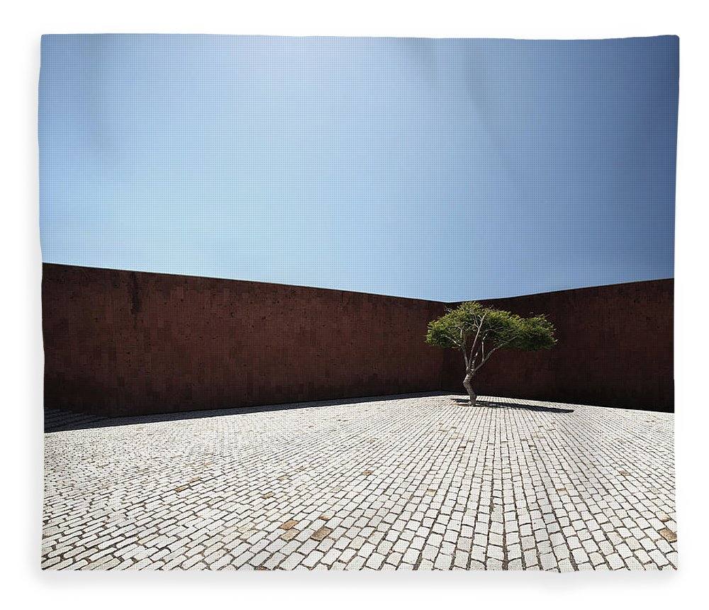 City Fleece Blanket featuring the photograph Perspective View On Square With Tree by Stanislaw Pytel