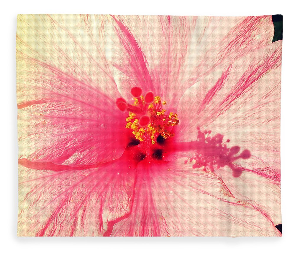 Florida Fleece Blanket featuring the photograph Pink Hibiscus by Chris Andruskiewicz