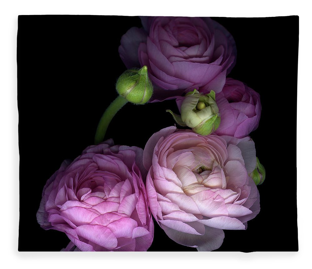 Bud Fleece Blanket featuring the photograph Pinkalicius Ranunculus... Pink For by Photograph By Magda Indigo