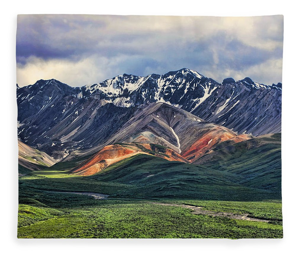 Polychrome Fleece Blanket featuring the photograph Polychrome by Heather Applegate