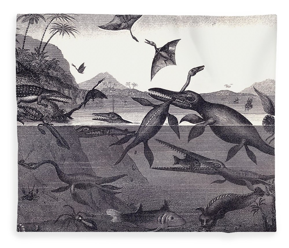 Dinosaur Fleece Blanket featuring the drawing Prehistoric Animals Of The Lias Group by English School