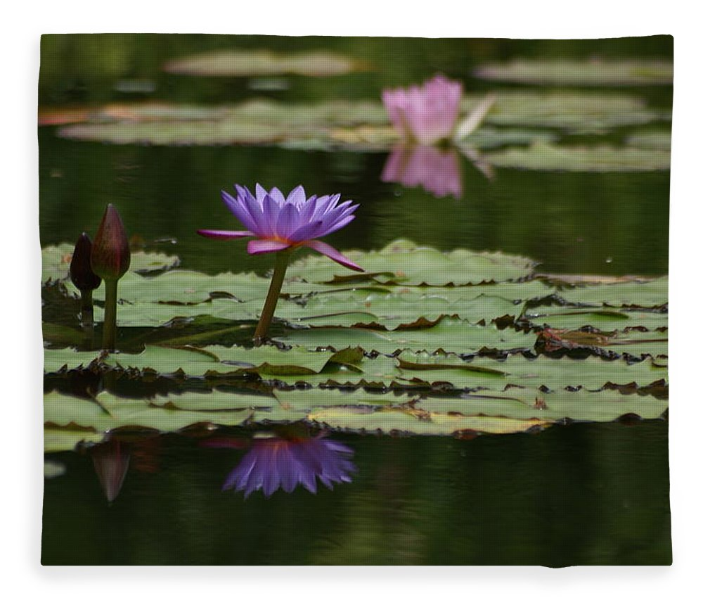 Purple Blossoms Fleece Blanket featuring the photograph Purple Blossoms Floating by Patricia Twardzik