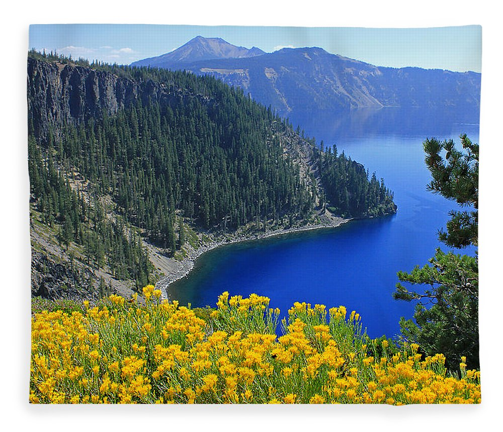 Rabbit Brush Fleece Blanket featuring the photograph D2m5622-rabbit Brush At Crater Lake by Ed Cooper Photography