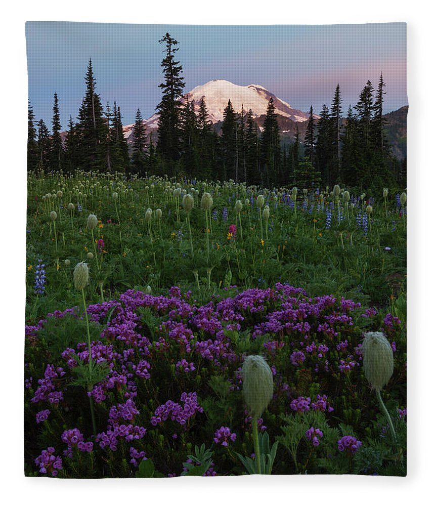 Rainier Fleece Blanket featuring the photograph Rainier Pastel Dawn by Mike Dawson