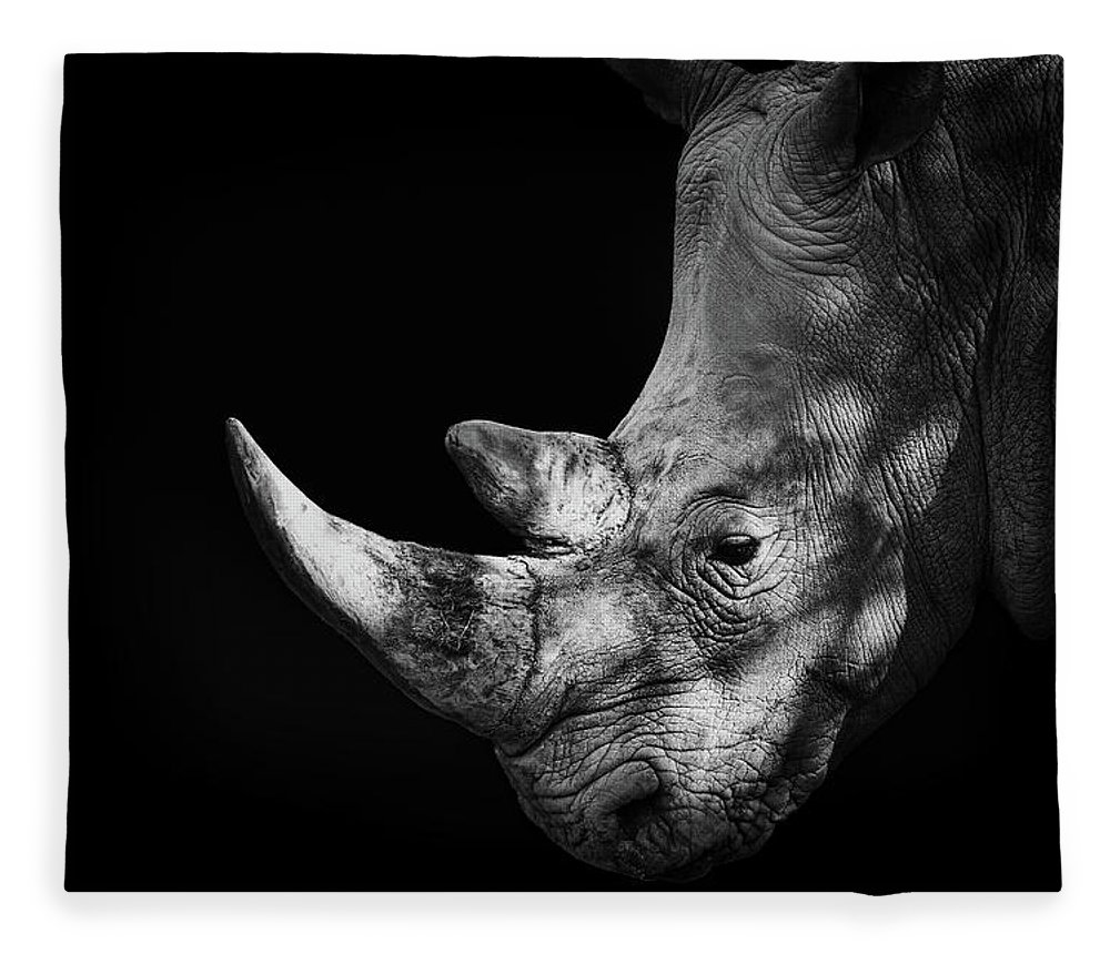 Horned Fleece Blanket featuring the photograph Rhinoceros by Malcolm Macgregor