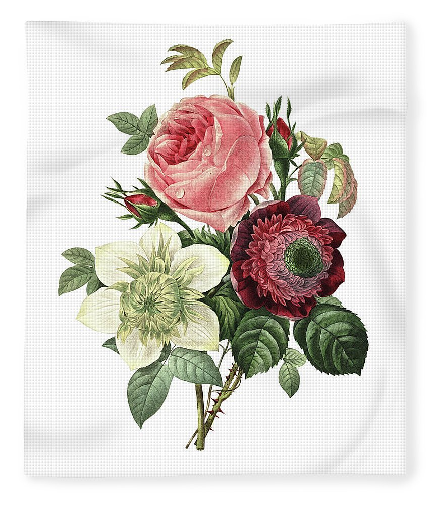 White Background Fleece Blanket featuring the digital art Rose, Anemone And Clematis | Redoute by Nicoolay