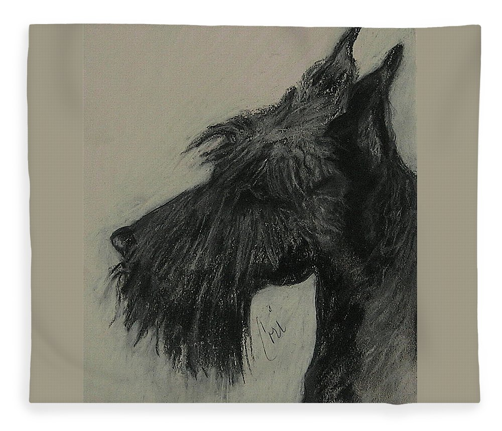 Drawing Fleece Blanket featuring the drawing Scottish Delight by Cori Solomon