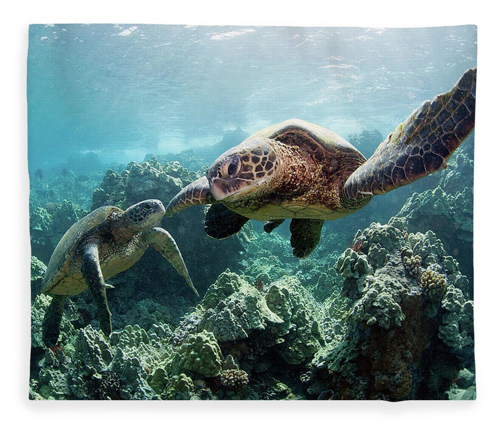 Underwater Fleece Blanket featuring the photograph Sea Turtles by M Swiet Productions