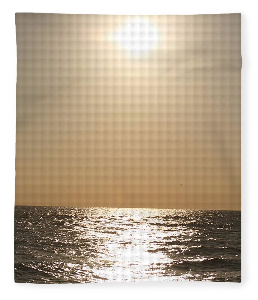 Silver Fleece Blanket featuring the photograph Silver and Gold by Nadine Rippelmeyer