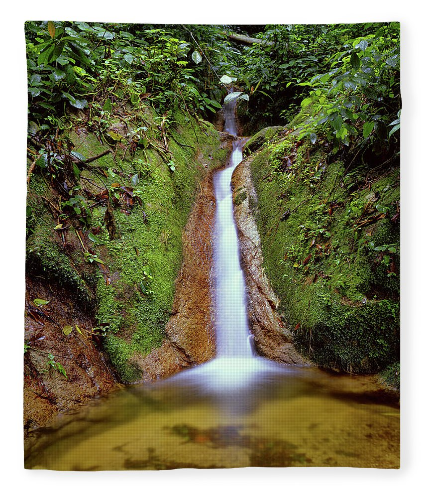 South America Fleece Blanket featuring the photograph Small Waterfall In Tropical Rain Forest by Fstoplight