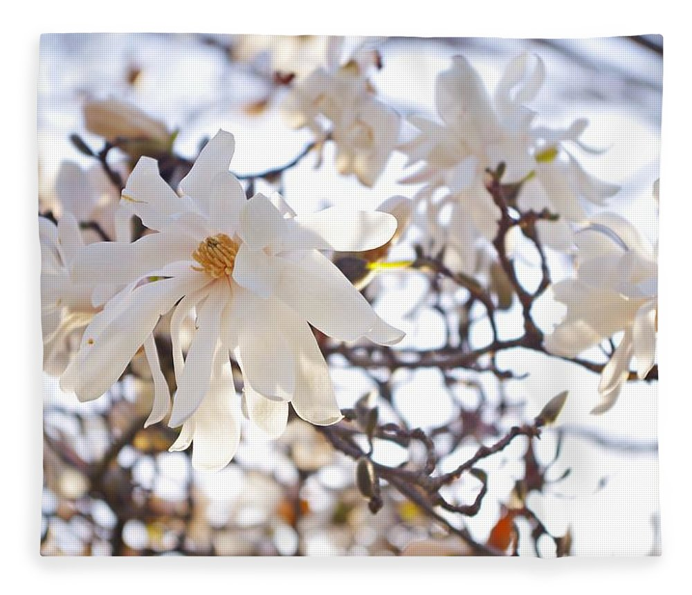 Magnolia Stellata Fleece Blanket featuring the photograph Spring Flowers by Sharon Popek