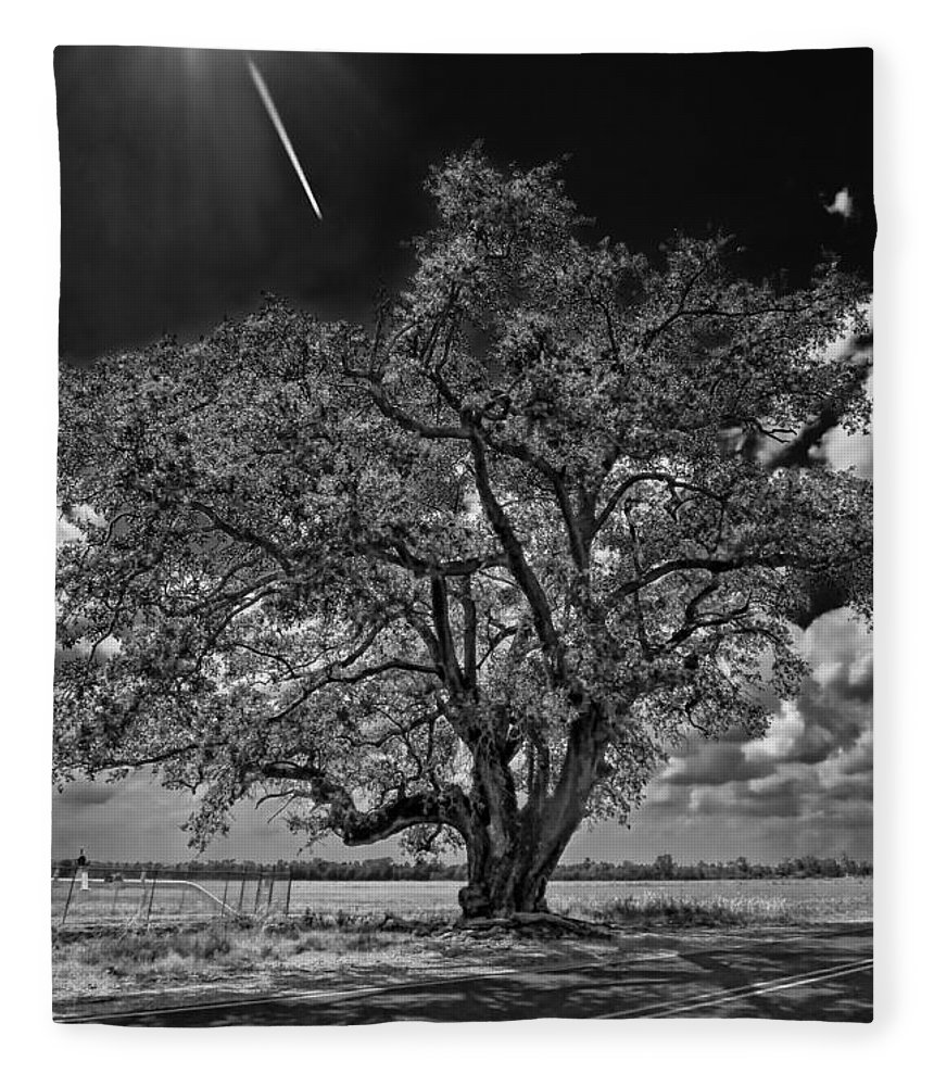 New Orleans Fleece Blanket featuring the photograph Stardom Bw by Steve Harrington