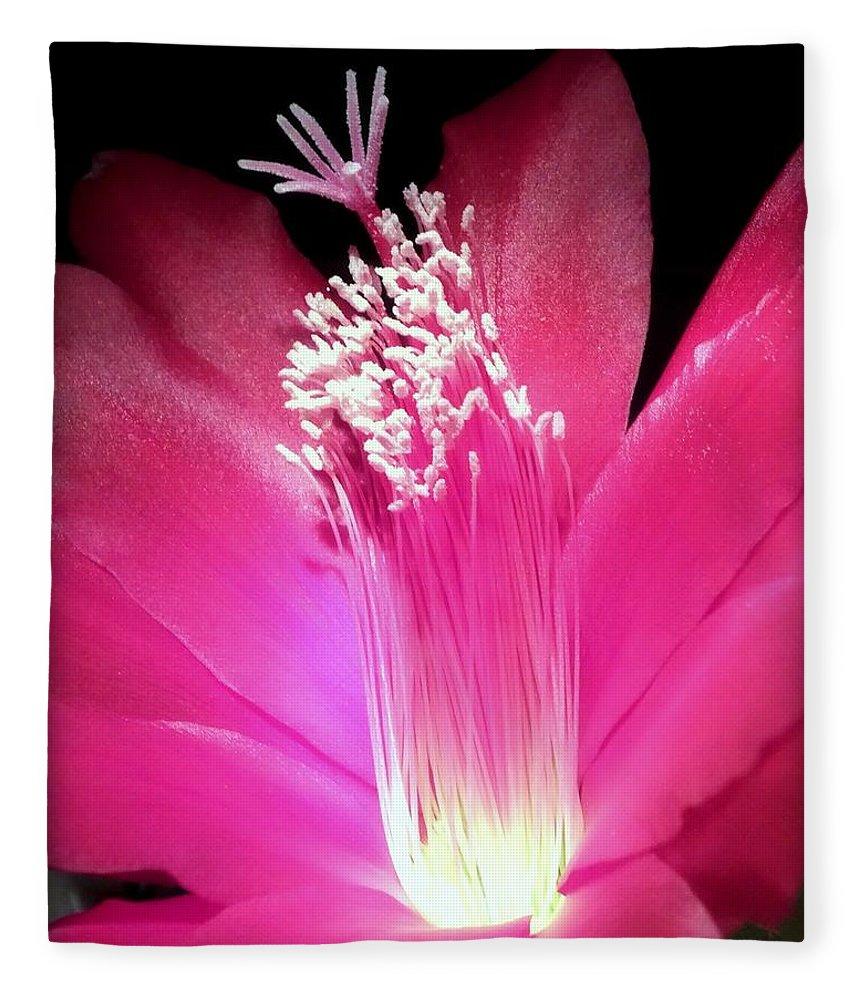 Hot Pink Fleece Blanket featuring the photograph Stardust by Karen Wiles