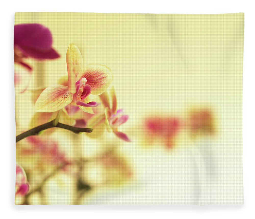 Purple Fleece Blanket featuring the photograph Stem Of Orchids by Jlph
