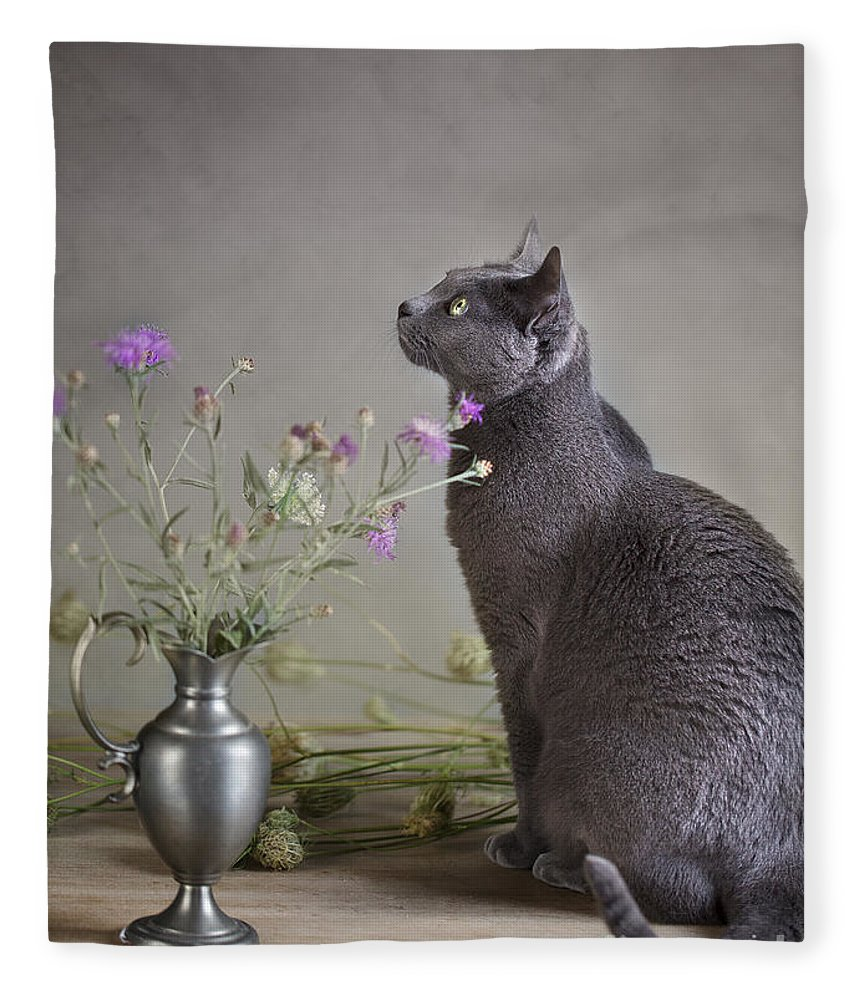 Cat Fleece Blanket featuring the photograph Still Life With Cat by Nailia Schwarz
