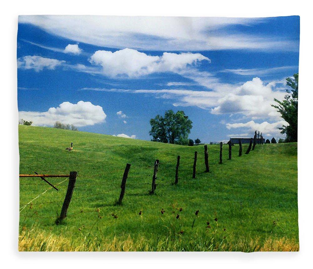 Summer Landscape Fleece Blanket featuring the photograph Summer Landscape by Steve Karol