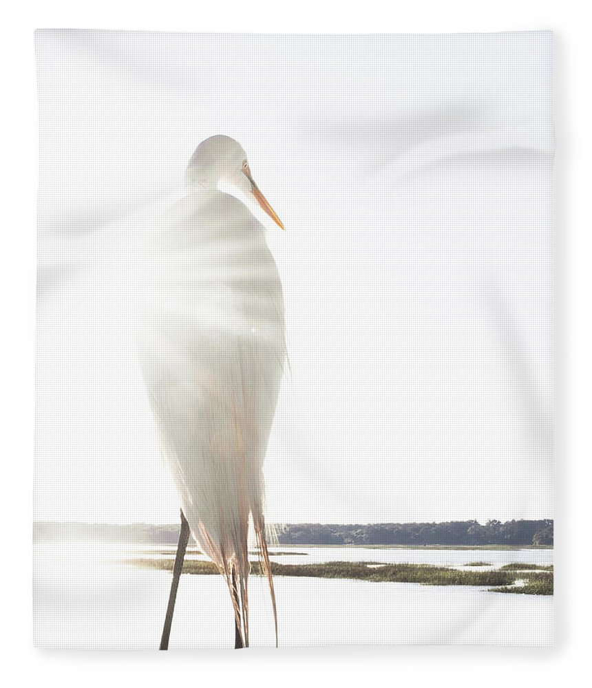 Standing Water Fleece Blanket featuring the photograph Sun Perch by Copyright Dan Smith