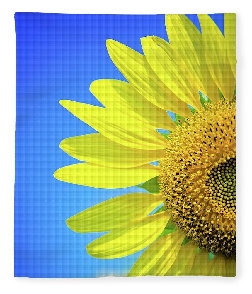 Clear Sky Fleece Blanket featuring the photograph Sunflower Against Blue Sky by N. Umnajwannaphan