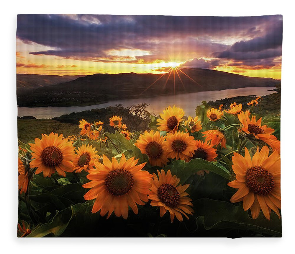 Outdoors Fleece Blanket featuring the photograph Sunflower Field by Jeremy Cram Photography