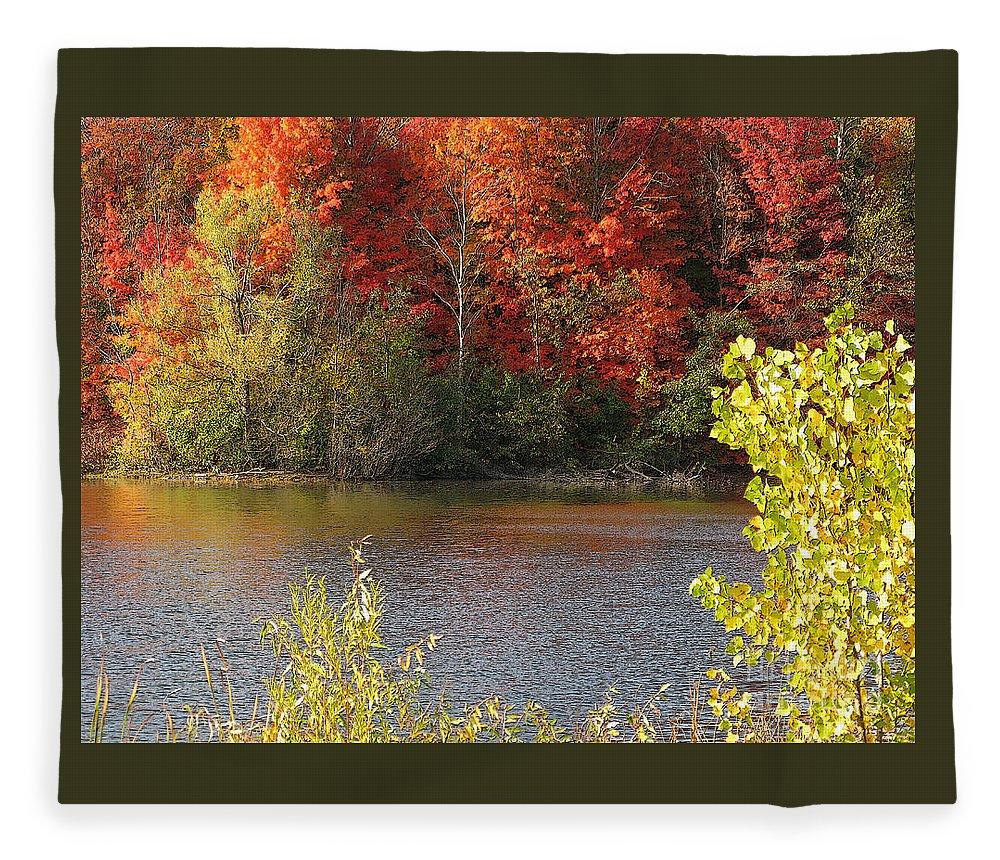 Autumn Fleece Blanket featuring the photograph Sunlit Autumn by Ann Horn