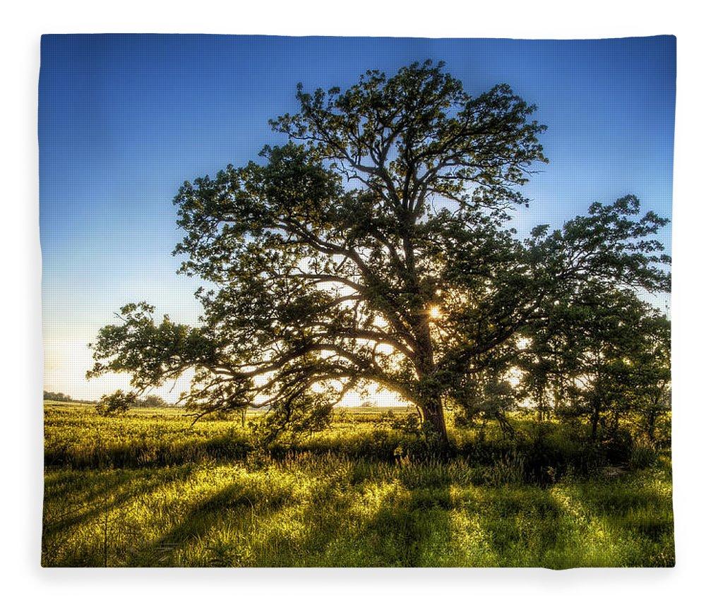 Sunset Fleece Blanket featuring the photograph Sunset Oak by Scott Norris