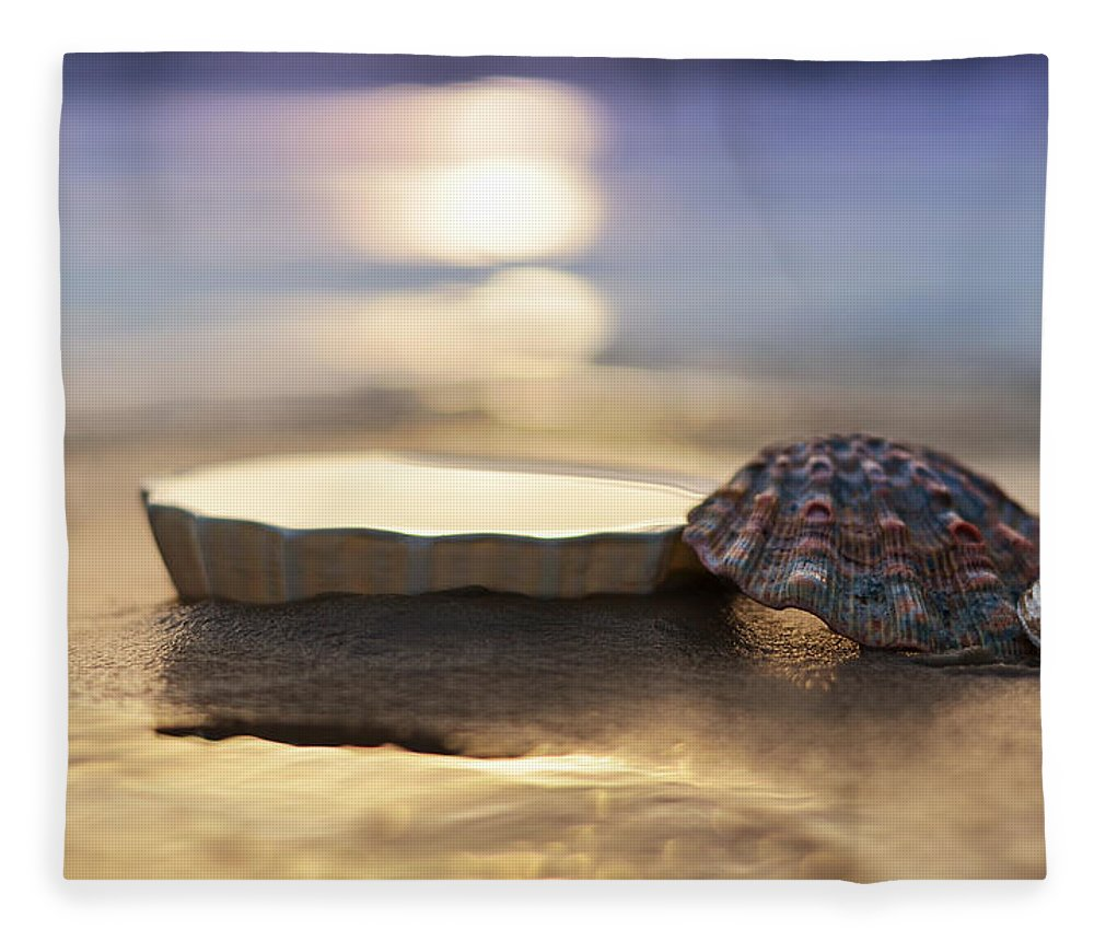 Laura Fasulo Fleece Blanket featuring the photograph Sunset Shells by Laura Fasulo