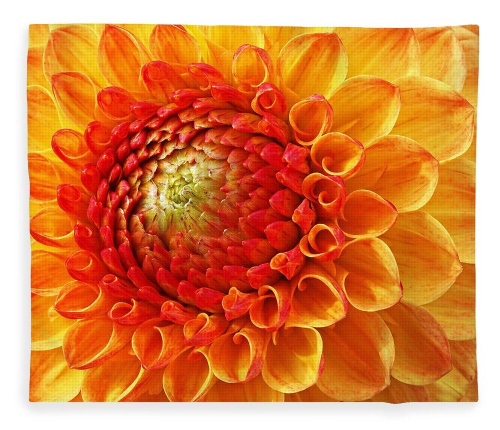 Orange Flower Fleece Blanket featuring the photograph Sunshine by Gill Billington