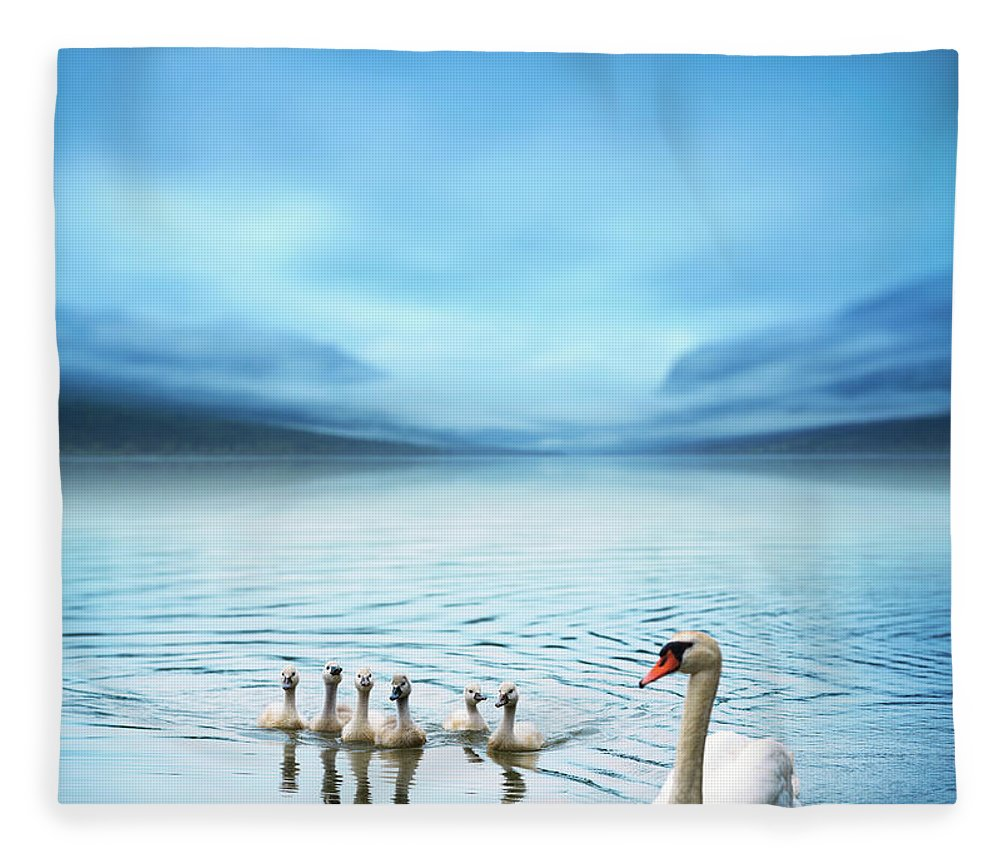 Scenics Fleece Blanket featuring the photograph Swan Family On The Lake by Borchee