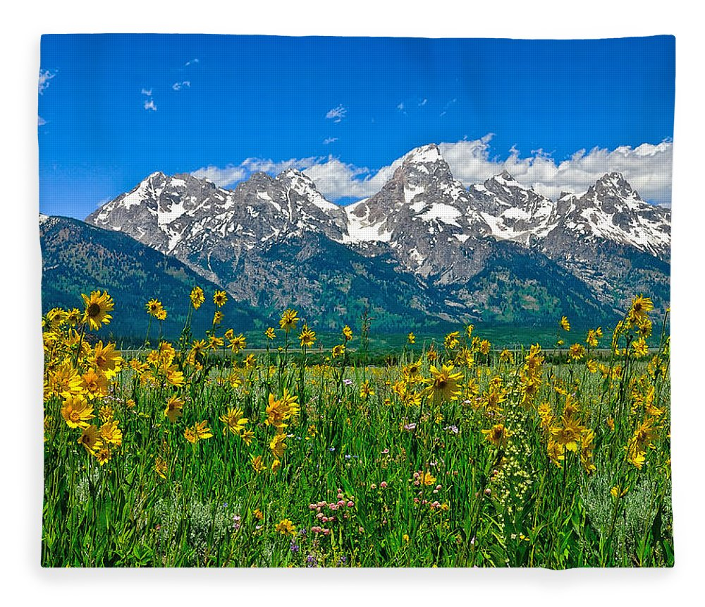 Grand Teton National Park Fleece Blanket featuring the photograph Teton Peaks And Flowers by Greg Norrell