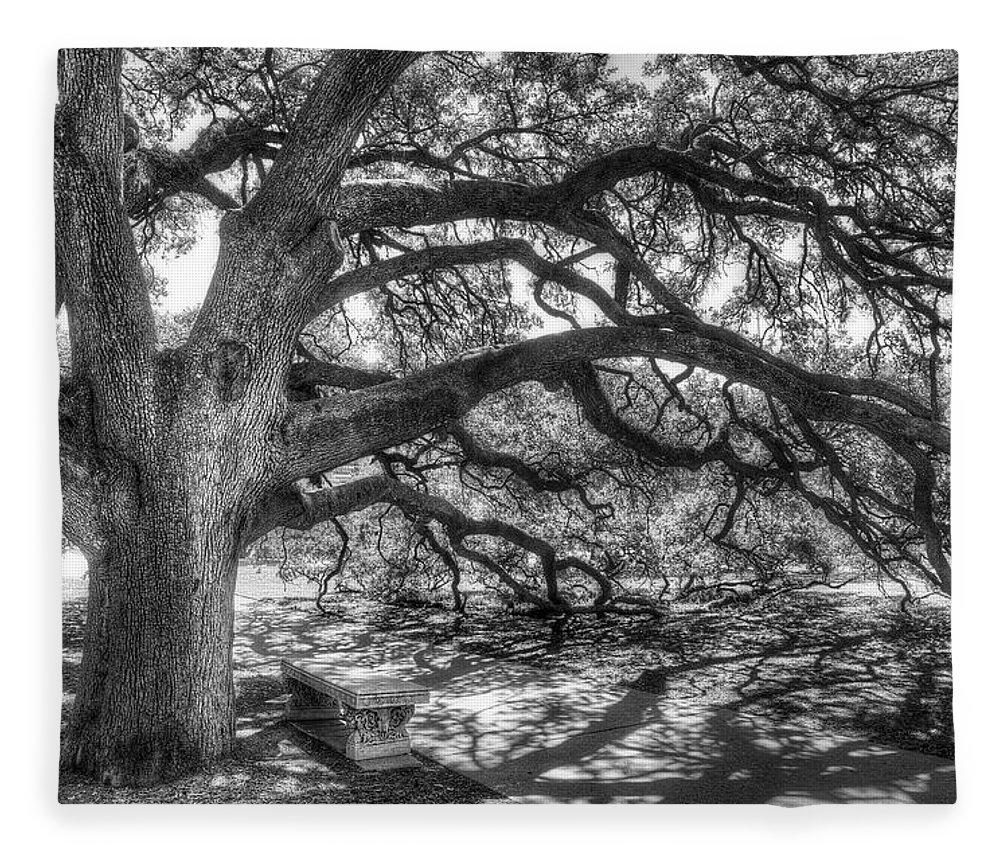 Tree Fleece Blanket featuring the photograph The Century Oak by Scott Norris