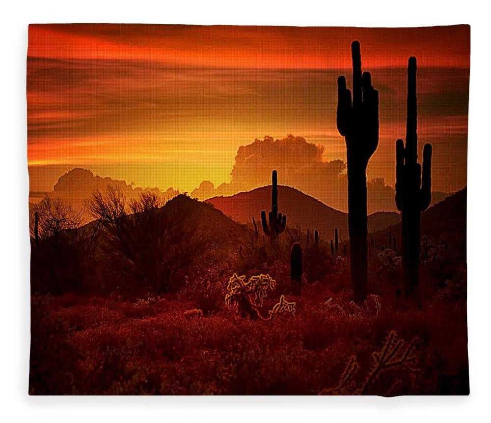 Desert Southwest Fleece Blanket featuring the photograph The Essence Of The Southwest by Saija Lehtonen