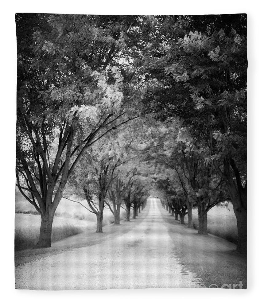 Driveway Fleece Blanket featuring the photograph The Long Road Home by Edward Fielding