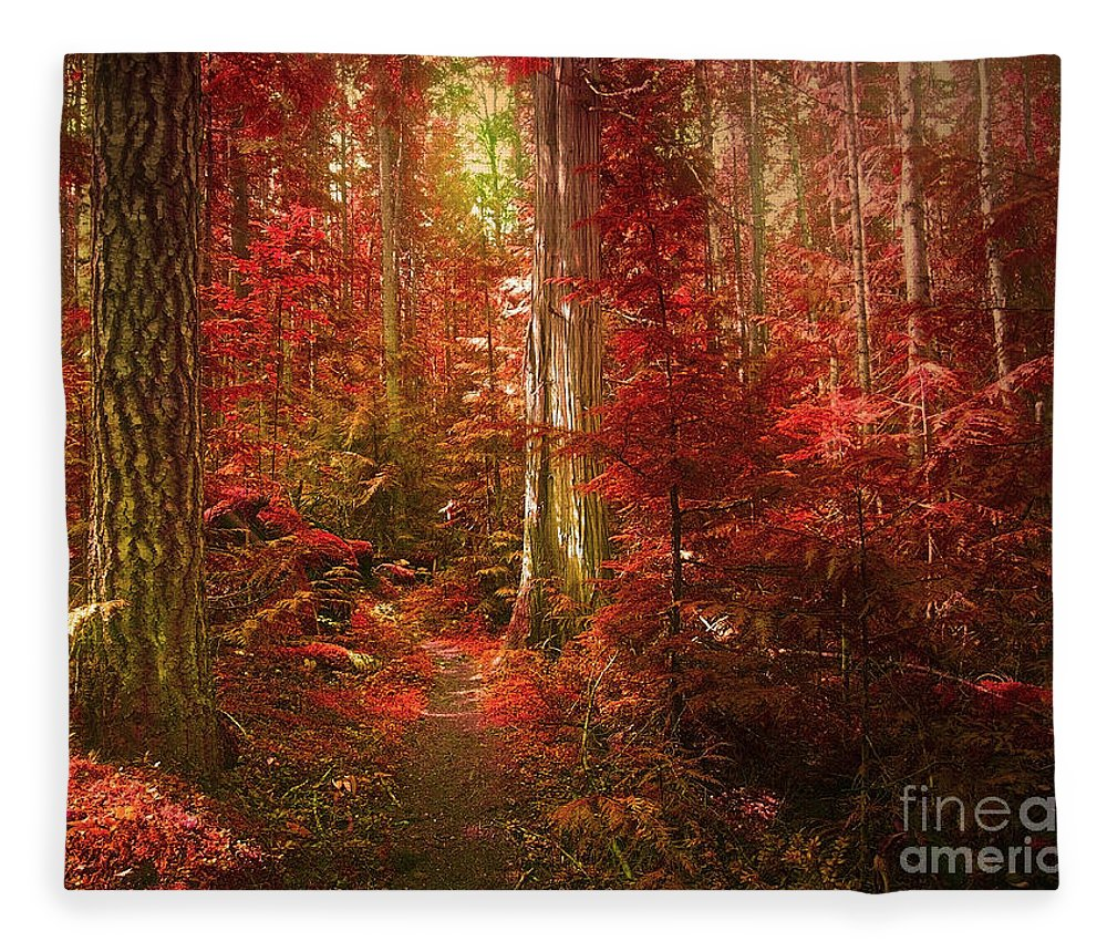 Trees Fleece Blanket featuring the photograph The Mystic Forest by Tara Turner