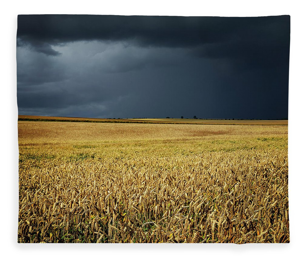Scenics Fleece Blanket featuring the photograph Thunderstorm Clouds Over Wheat Field by Avtg
