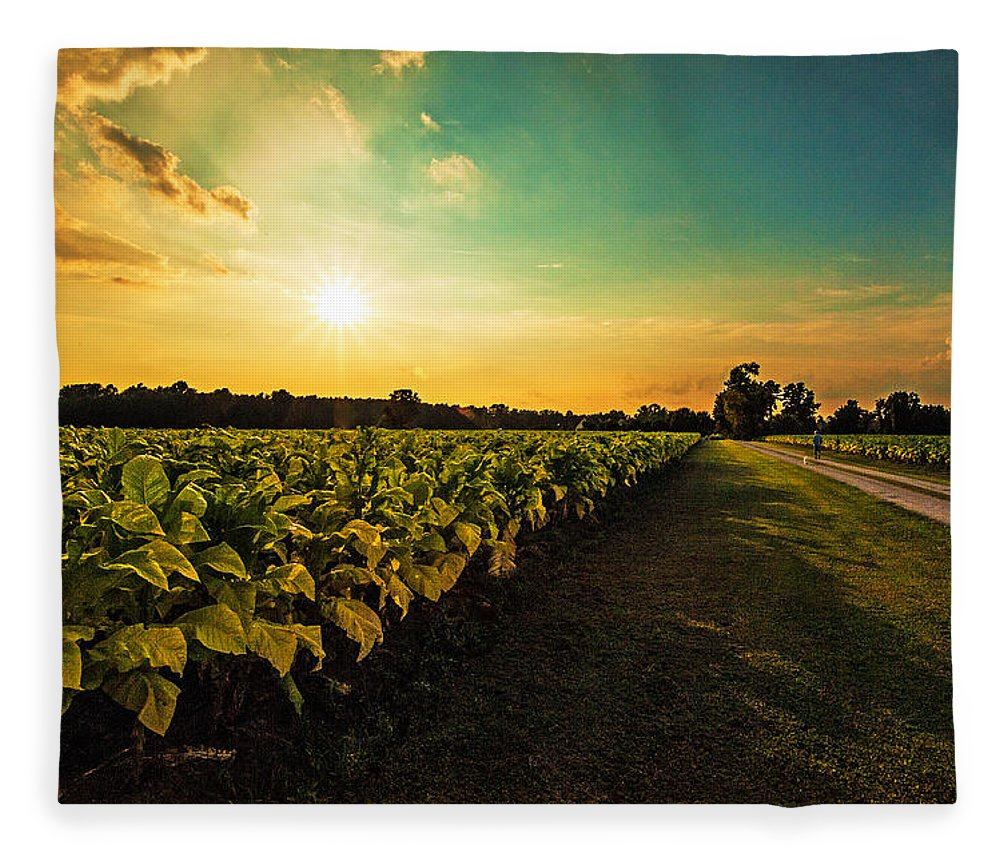 Tranquility Fleece Blanket featuring the photograph Tobacco Road by John Harding Photography