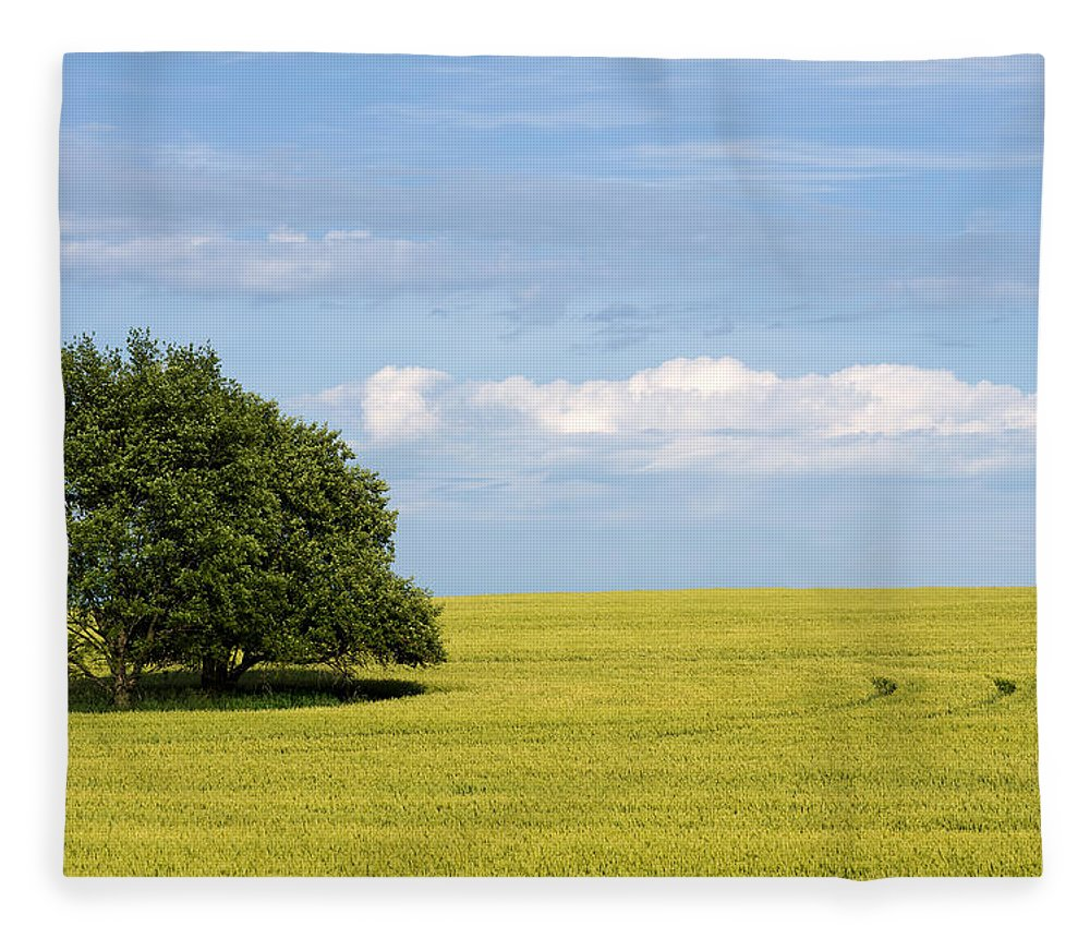 Grass Family Fleece Blanket featuring the photograph Trees In Wheat Field by Simplycreativephotography