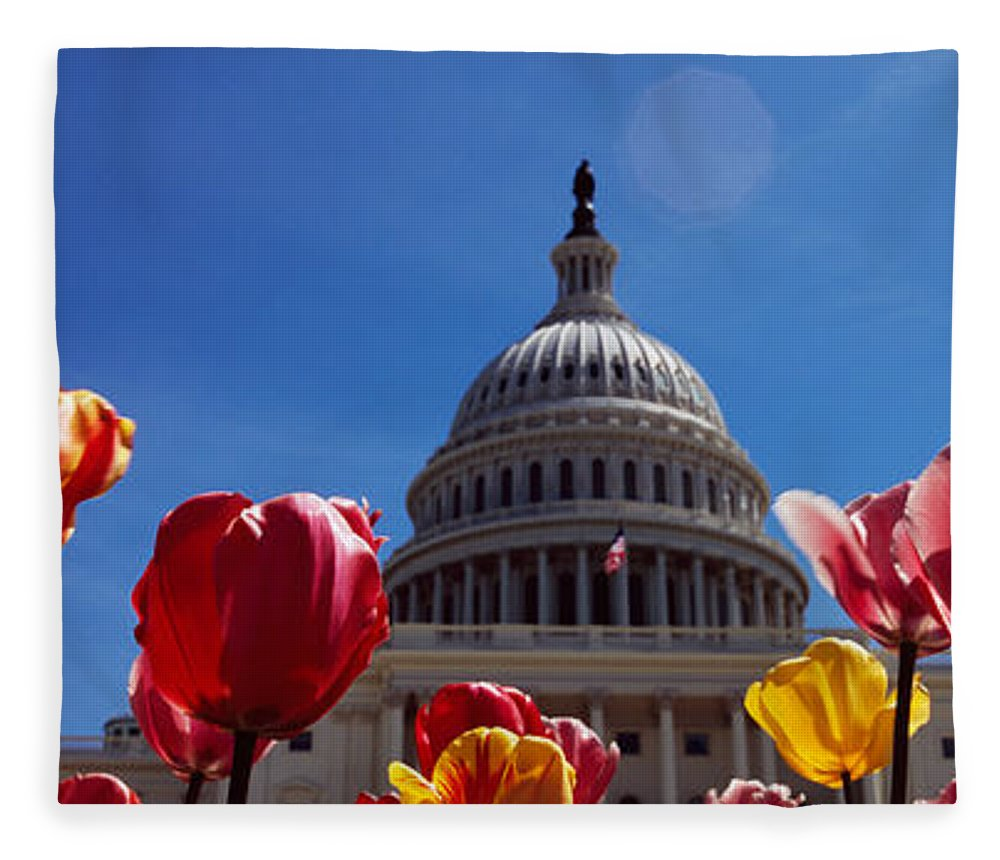 Photography Fleece Blanket featuring the photograph Tulips With A Government Building by Panoramic Images