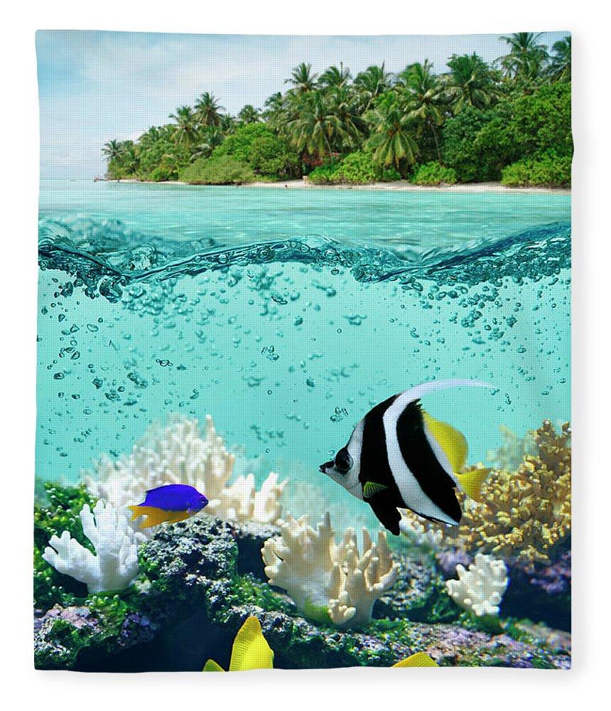 Bedrock Fleece Blanket featuring the photograph Underwater Life In Tropical Sea by Narvikk