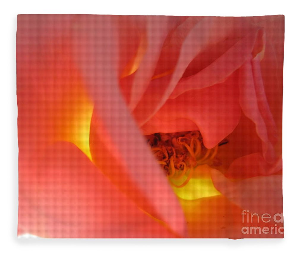 Floral Fleece Blanket featuring the photograph Warm Glow Pink Rose 2 by Tara Shalton