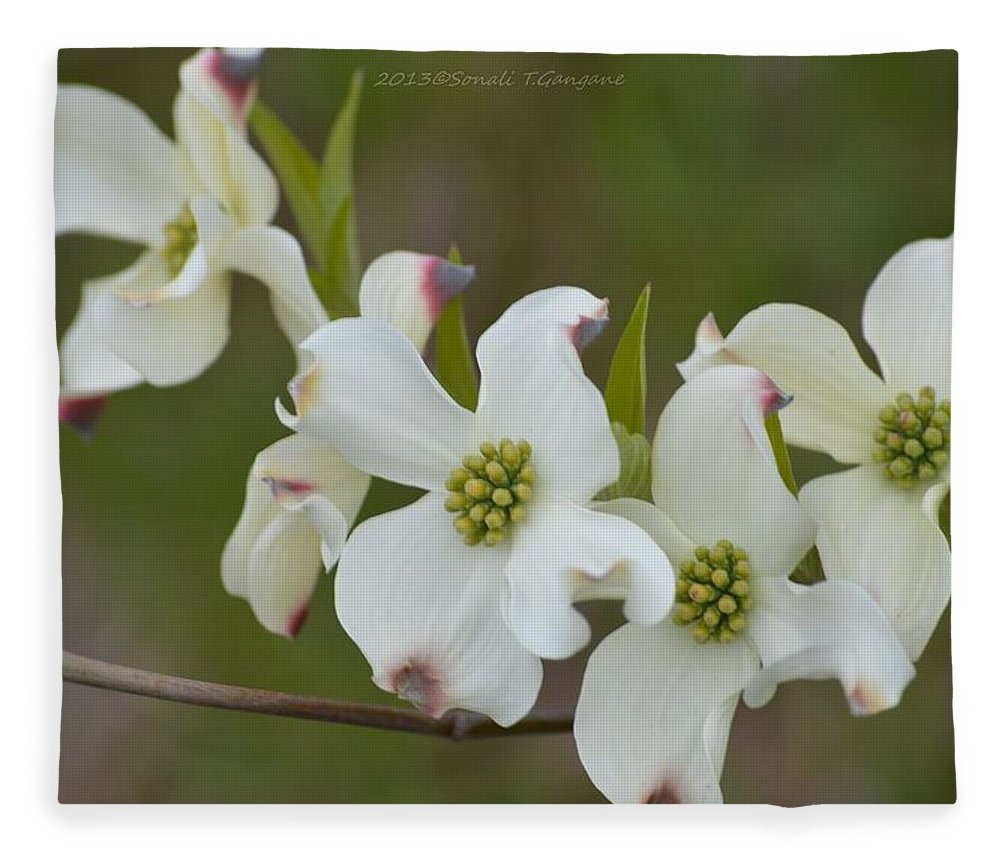 White Cross Flowers Fleece Blanket For Sale By Sonali Gangane