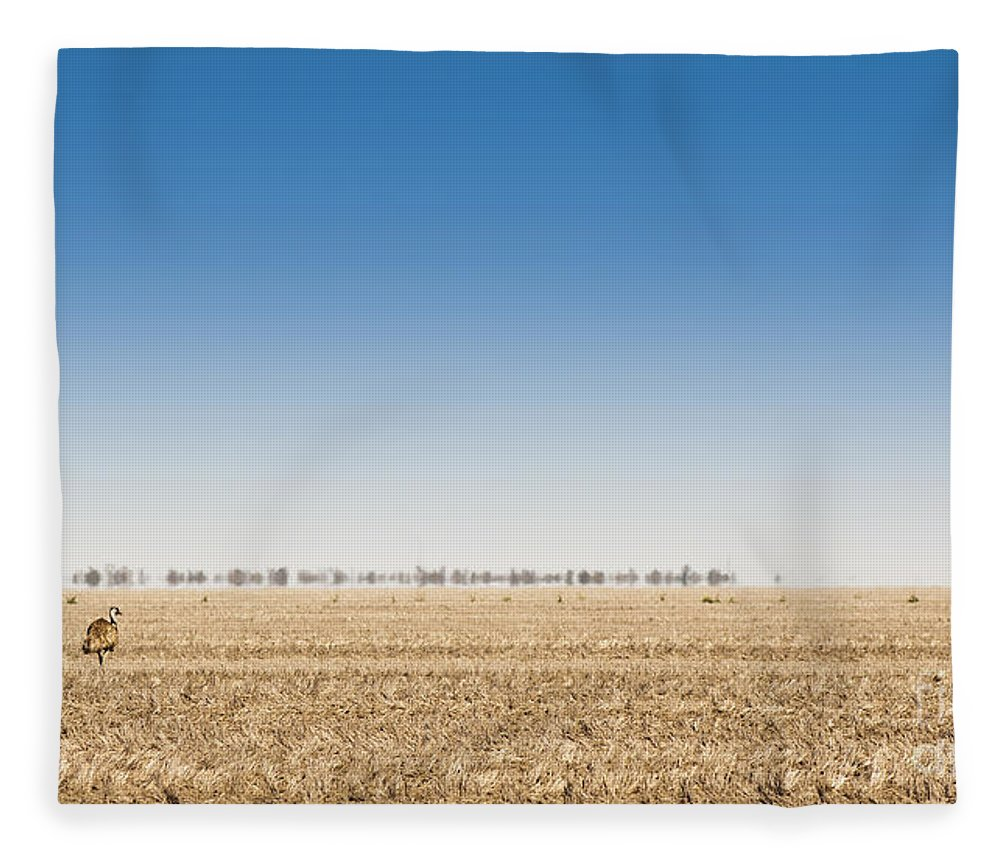 Large Fleece Blanket featuring the photograph Wild Emus by Tim Hester