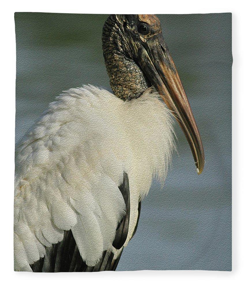 Wood Stork Fleece Blanket featuring the photograph Wood Stork In Oil by Deborah Benoit