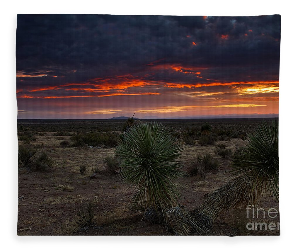 Yucca Fleece Blanket featuring the photograph Yucca Sunset by Mike Dawson