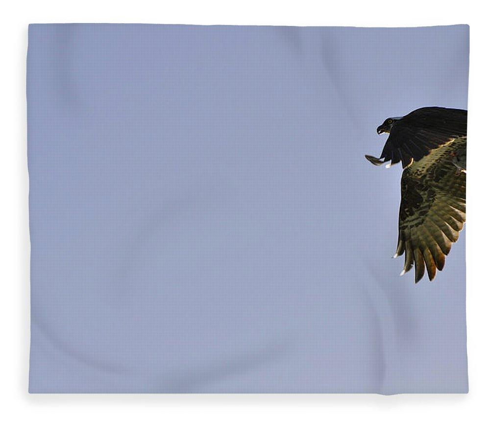 Osprey Fleece Blanket featuring the photograph Osprey Lunch To Go III by Christine Stonebridge