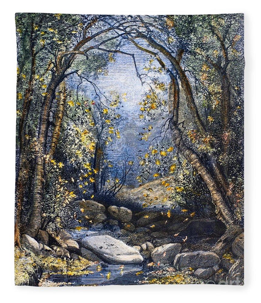 1873 Fleece Blanket featuring the photograph Autumn, 1873 by Granger