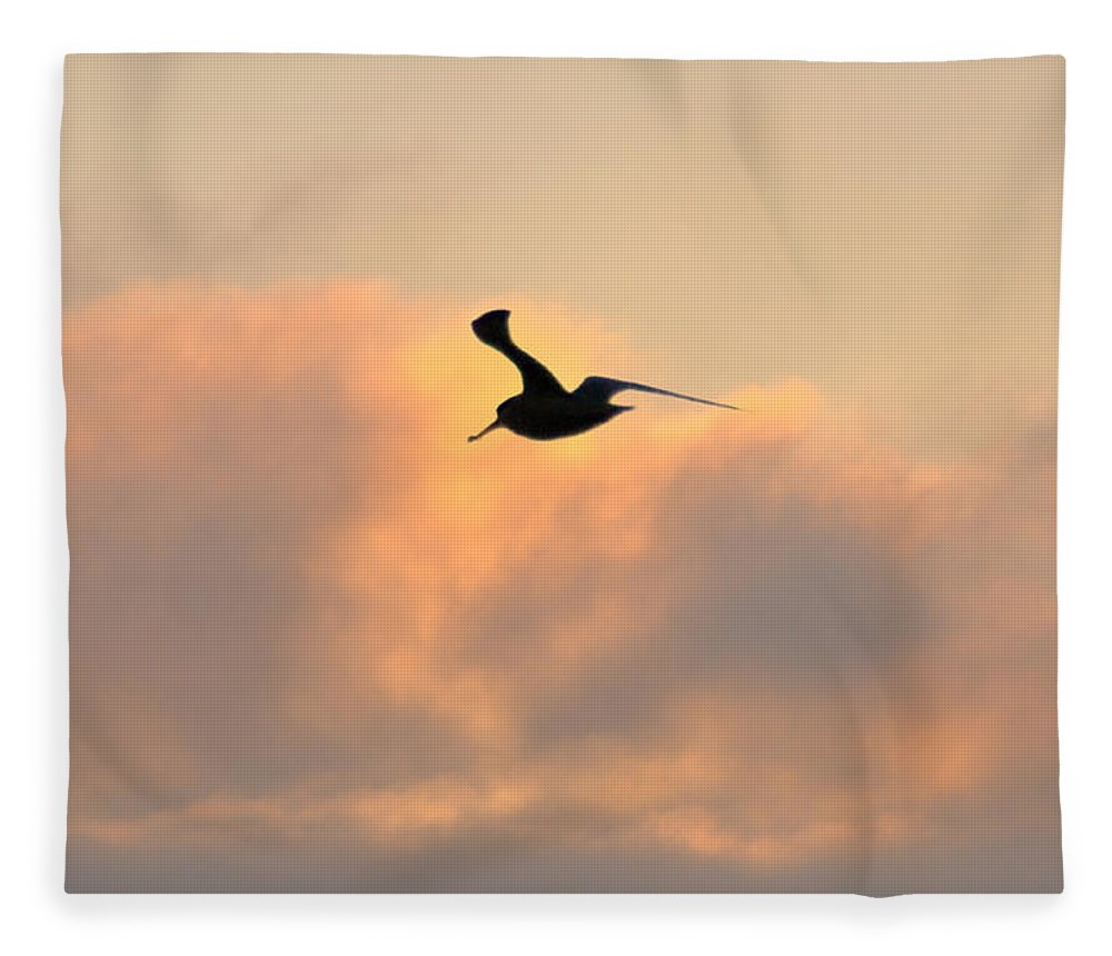 Seagull Fleece Blanket featuring the photograph A Seagull Takes Flight by Bill Cannon