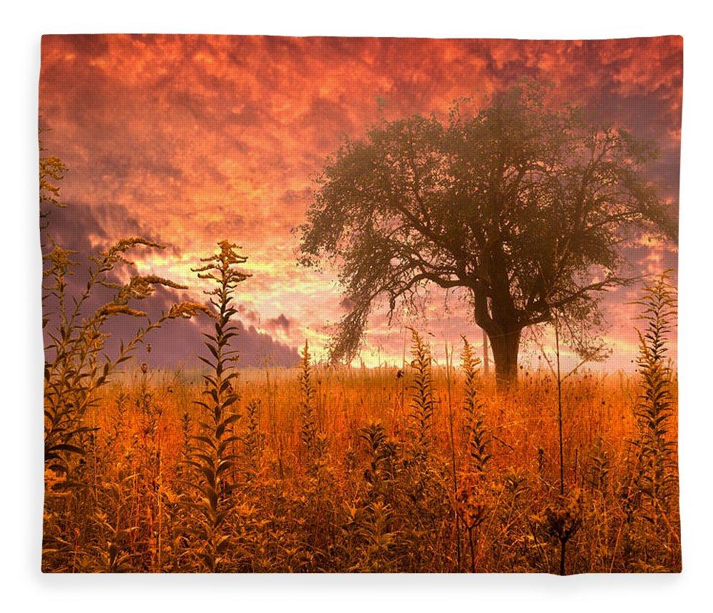 Andrews Fleece Blanket featuring the photograph Aflame by Debra and Dave Vanderlaan