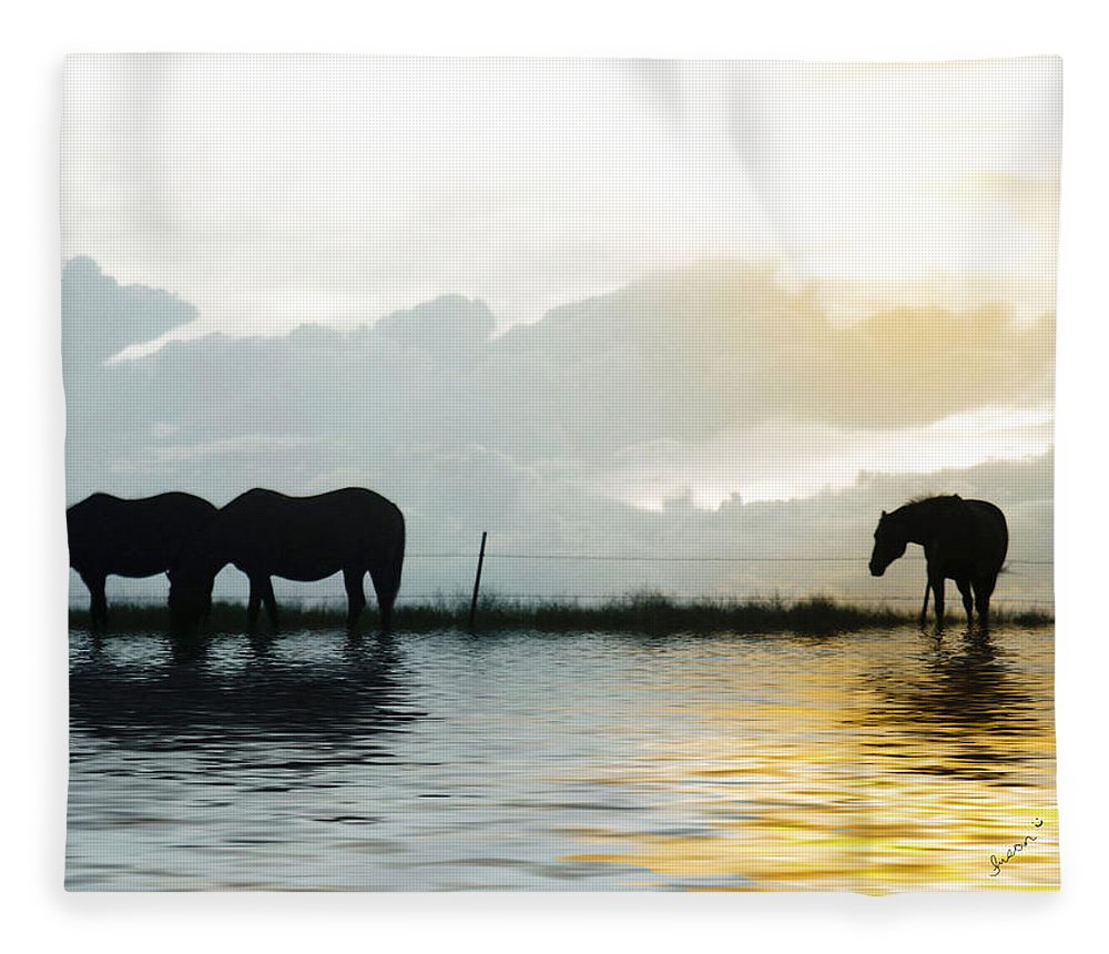 Horse Fleece Blanket featuring the photograph Alone by Susan Kinney