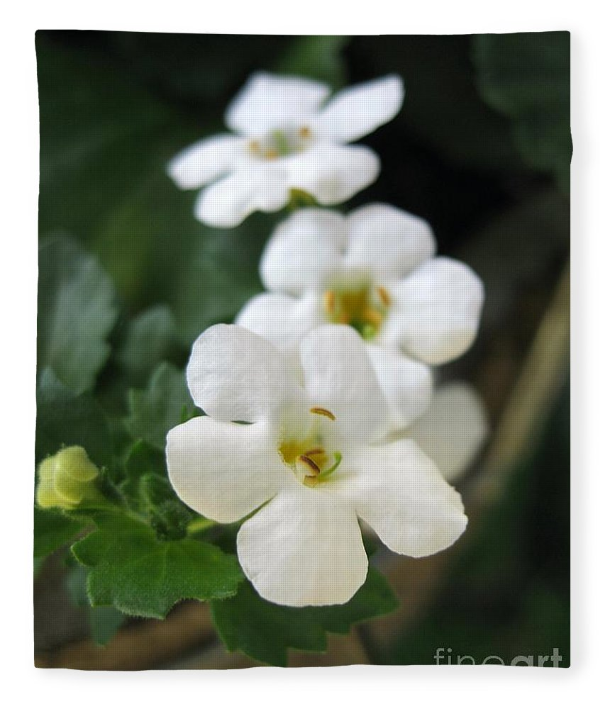Bacopa Fleece Blanket featuring the photograph Bacopa Named Snowtopia by J McCombie