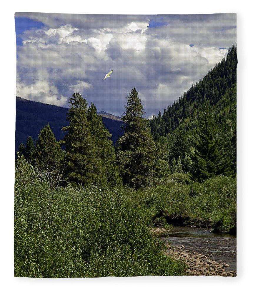 Vail Fleece Blanket featuring the photograph Bird Over Vail 1 by Madeline Ellis